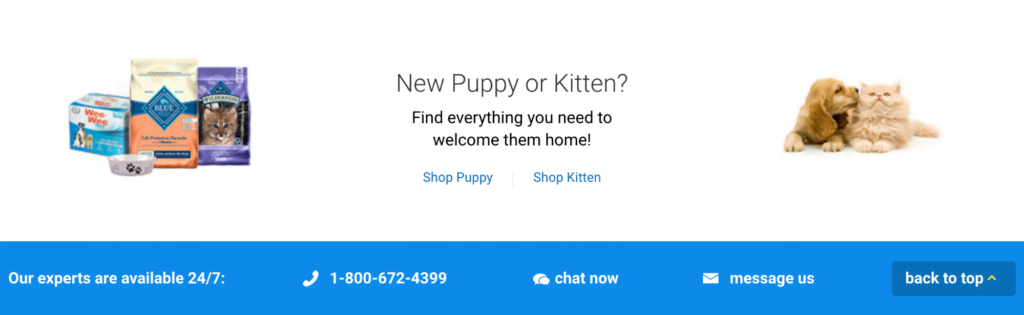 How To Add Contact Information To A Landing Page: Chewy Example